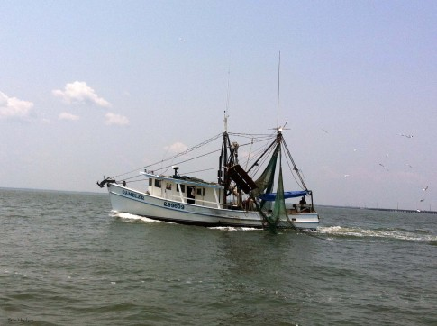 shrimpboat1